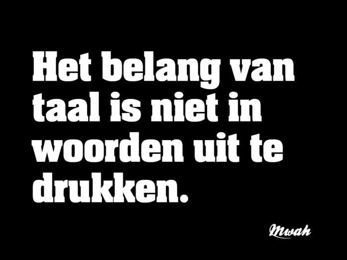 investering in Nederlandse taal